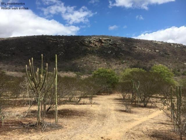 Fazenda em gravata 502 hectares, terreno amplo sen um vale com passagem de rio 8km da br23 - Foto 8
