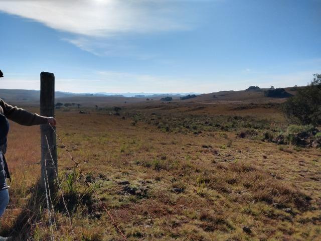 Área de terras com 22,24 hectares própria para cultura - Foto 3