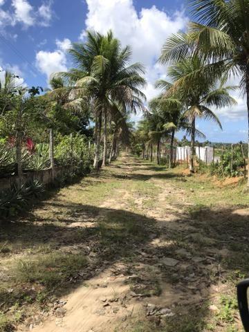 Granja, sítio, fazenda em Igarassu, 4 hectares com bastante benfeitorias! - Foto 19