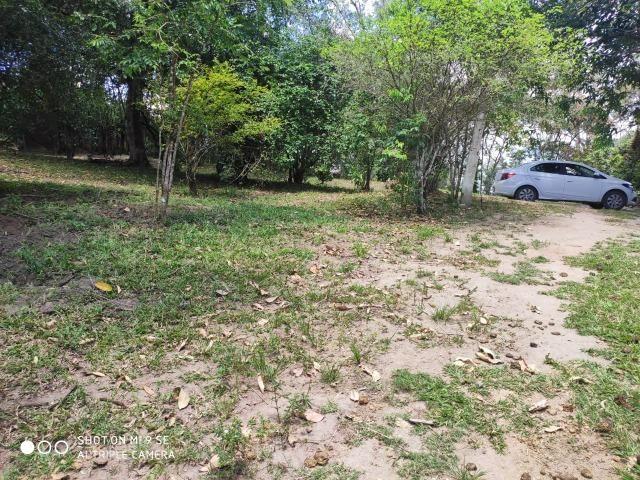 Chácara / Chã Grande Com 04 Hectares - Foto 16
