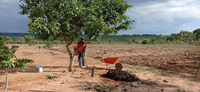 Chácara 5 hectares - Foto 16