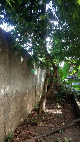 Casa à venda, 3 quartos, 1 suíte, 2 vagas, Santa Monica - Belo Horizonte/MG - Foto 6