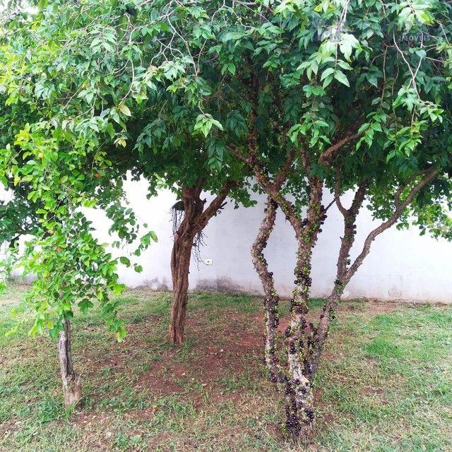 Três Lagoas - Casa Padrão - Jardim Paranapunga - Foto 8