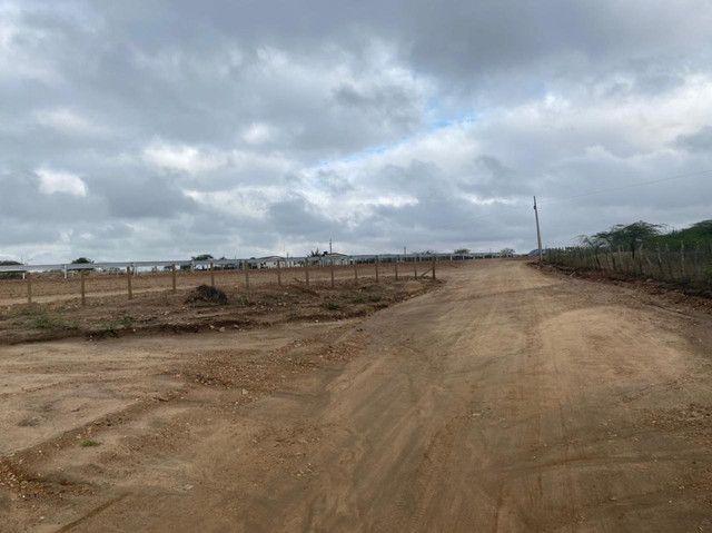 Vendo area de 1300 hectares. Vendo a partir de 10hect. - Foto 15