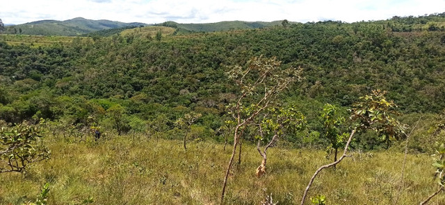 Lindas Fazendinhas de 20.000 m² na Região de Caeté R$39.900,00 + parcelas TC80 - Foto 8