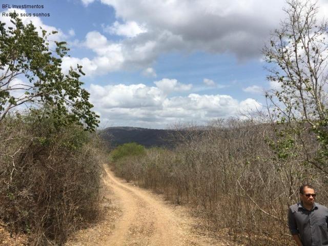 Fazenda em gravata 502 hectares, terreno amplo sen um vale com passagem de rio 8km da br23 - Foto 9