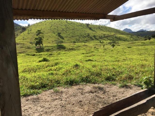 Fazenda - Centro Guaratinga - Foto 5