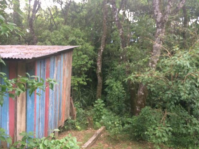 REF ? 2404 - Chácara com 2,400 m² localizada no capinzal com 3 nascente - Foto 12