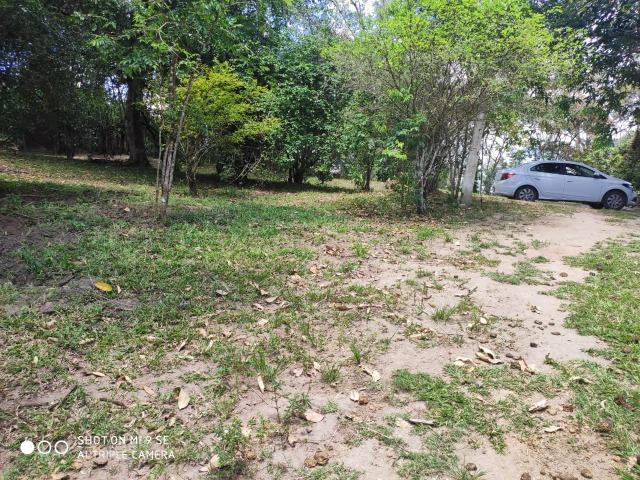Chácara / Chã Grande Com 04 Hectares - Foto 6