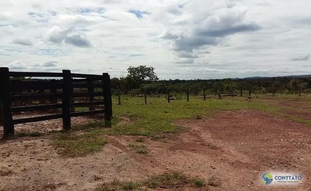 Fazenda 1500 hectares, com dupla aptidão, na Região Serra azul, Mato Grosso - Foto 6