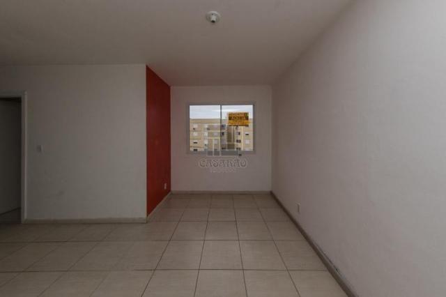 Apartamento para alugar com 2 dormitórios em Fragata, Pelotas cod:12741 - Foto 2