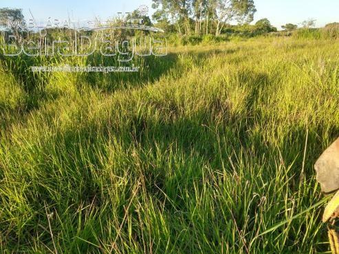 Fazenda Pecuaria 322 Hectares Plana - Foto 11