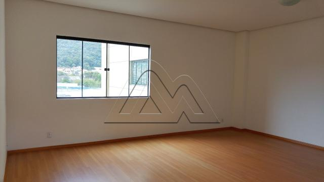 Apartamento para alugar com 2 dormitórios em Centro, Poços de caldas cod:AP00875 - Foto 3