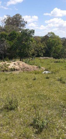 Chacara de 2 hectares á 7 km da br 293 - Foto 16
