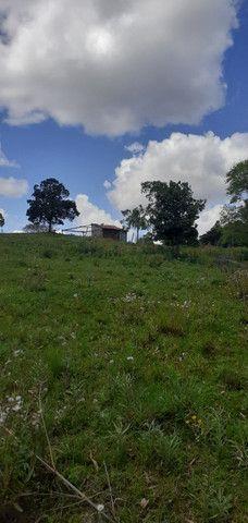 Chacara de 2 hectares á 7 km da br 293 - Foto 19