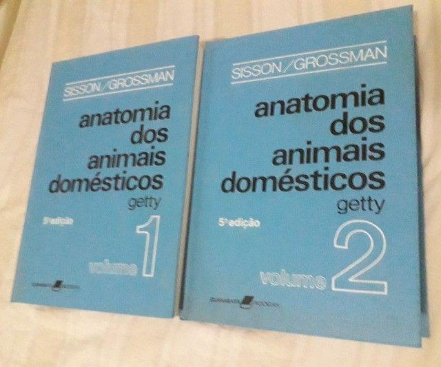 Getty - Anatomia dos Animais Domésticos. 5a edição. 2 Volumes