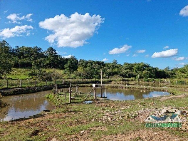 Velleda oferece 1 hectare a 5 minutos centro viamão com açude e casa, troca - Foto 14