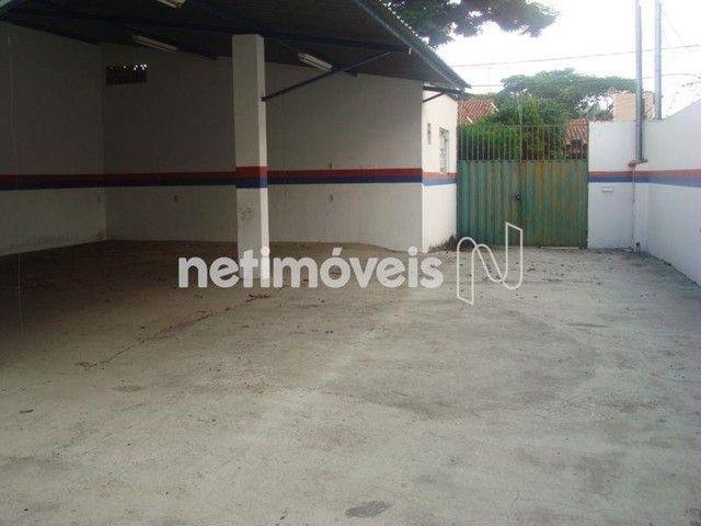 Casa à venda com 3 dormitórios em Santa amélia, Belo horizonte cod:463054 - Foto 5