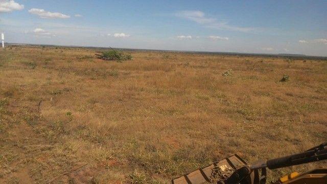 Fazenda Oportunidade de investimento  - Foto 16