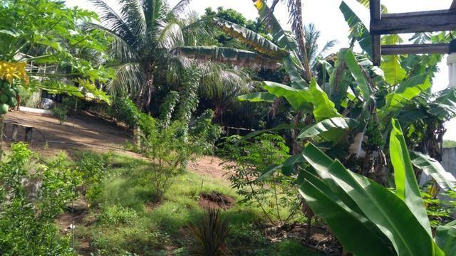 Terreno tipo granja com 900m² próximo da estrada da Redinha por R$75 mil - Foto 9
