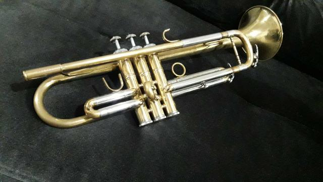 Trompete Eagle - Foto 2