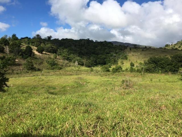 Fazenda - Centro Guaratinga - Foto 7