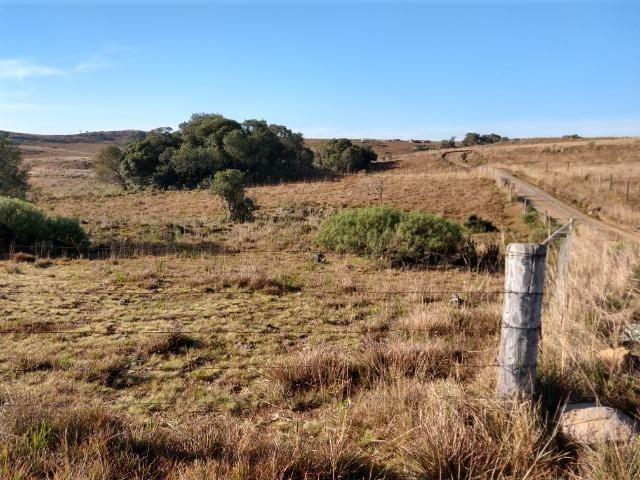 Área de terras com 22,24 hectares própria para cultura - Foto 2