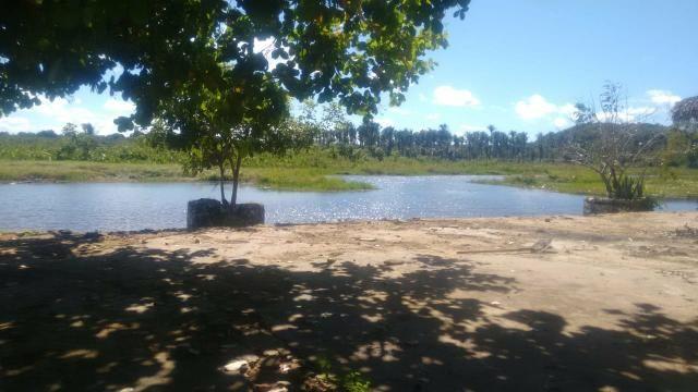 Vendo piscicultura/balneário - Foto 12