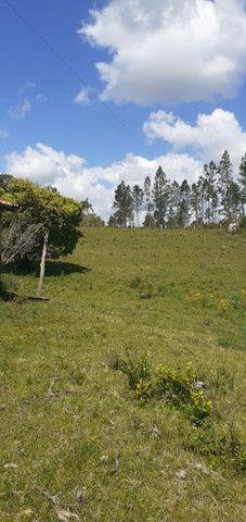 Chacara de 2 hectares á 7 km da br 293 - Foto 11