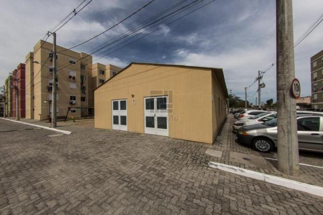 Apartamento para alugar com 2 dormitórios em Fragata, Pelotas cod:12741 - Foto 8