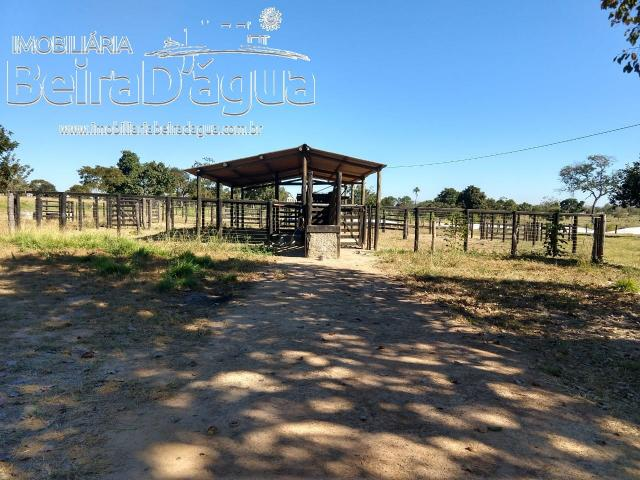 Fazenda Pecuaria 322 Hectares Plana - Foto 5