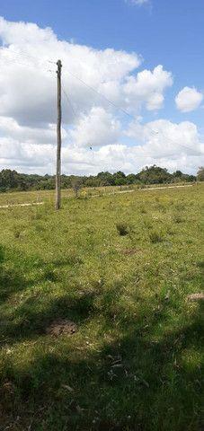Chacara de 2 hectares á 7 km da br 293 - Foto 10