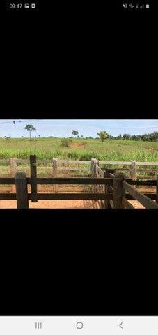 Fazenda 1100 alqueires soja ou pecuária.