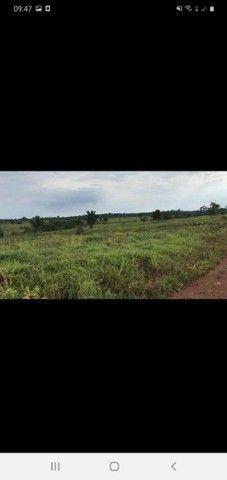 Fazenda 1100 alqueires  - Foto 3