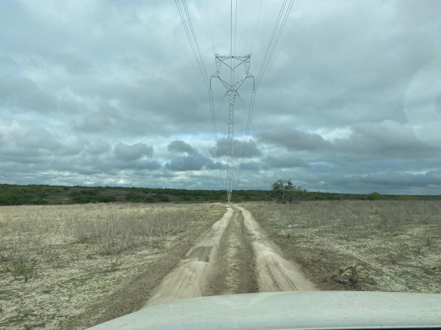 Vendo area de 1300 hectares. Vendo a partir de 10hect. - Foto 16