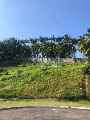 Jaraguá do Sul - Terreno Padrão - Vila Nova - Foto 2