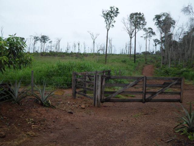 Fazenda em Juína MT - Bom investimento