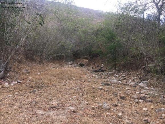 Fazenda em gravata 502 hectares, terreno amplo sen um vale com passagem de rio 8km da br23 - Foto 2