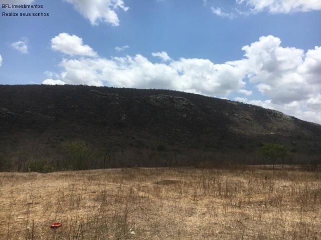 Fazenda em gravata 502 hectares, terreno amplo sen um vale com passagem de rio 8km da br23 - Foto 4