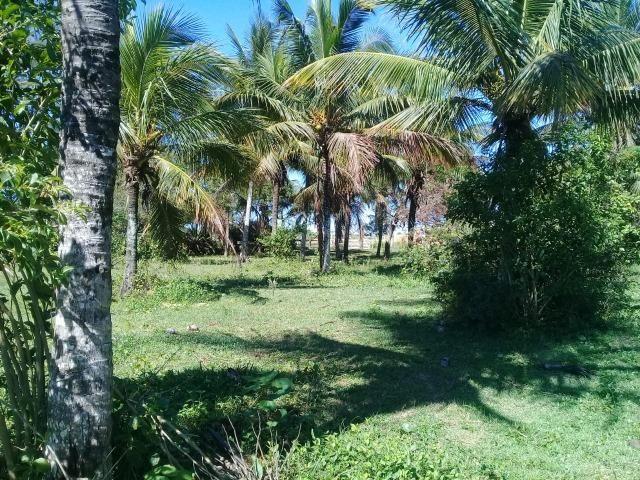 J - Residencial 1° de Janeiro - Unamar - Foto 9
