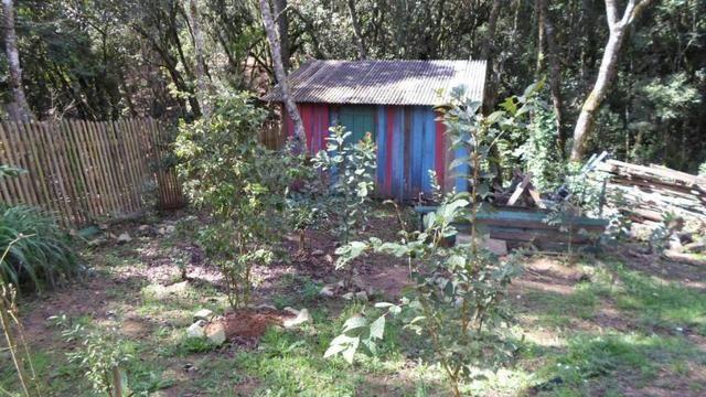 REF ? 2404 - Chácara com 2,400 m² localizada no capinzal com 3 nascente - Foto 13