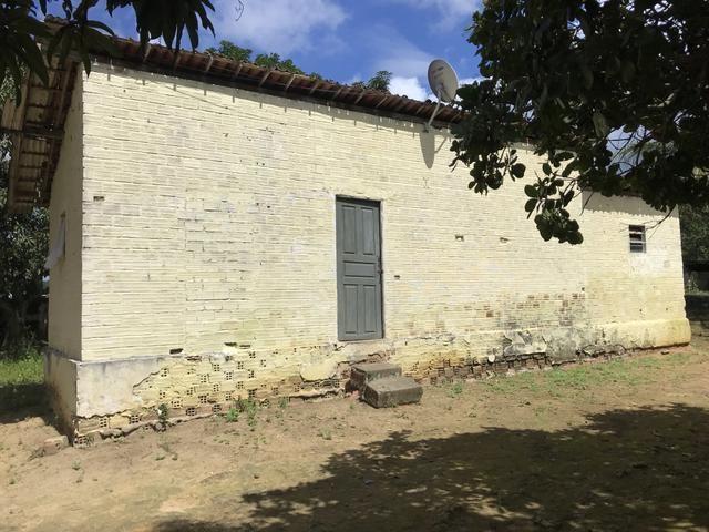 Granja, sítio, fazenda em Igarassu, 4 hectares com bastante benfeitorias! - Foto 6