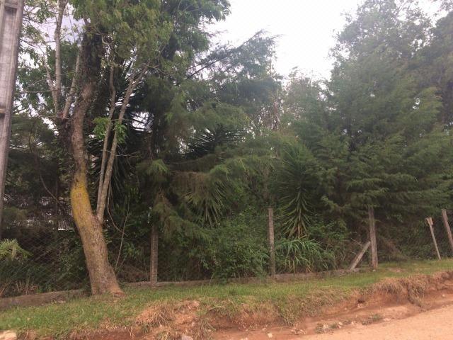 REF ? 2404 - Chácara com 2,400 m² localizada no capinzal com 3 nascente - Foto 10
