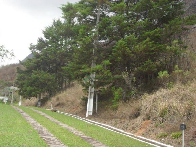 Terreno à venda, 2241 m² por R$ 80.000,00 - Vieira - Teresópolis/RJ - Foto 11