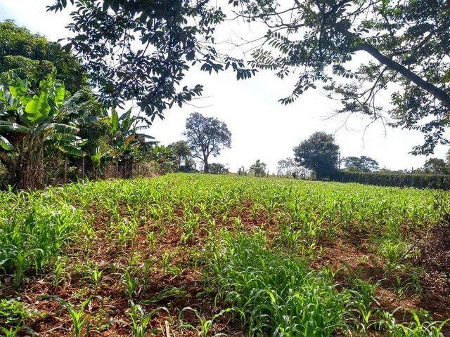 Vende terreno em Cesário Lange - Foto 4