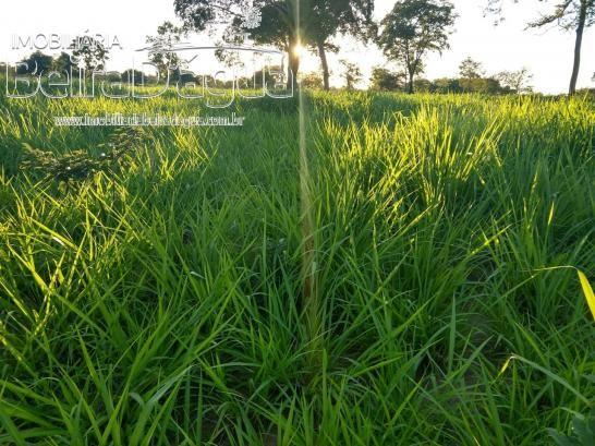 Fazenda Pecuaria 322 Hectares Plana - Foto 12