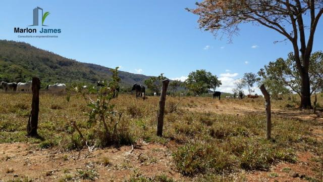 Fazenda em Cocalzinho-G! - Foto 9