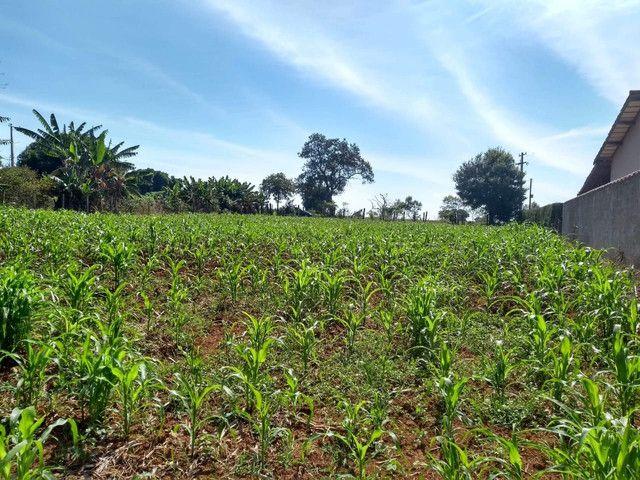 Vende terreno em Cesário Lange - Foto 5