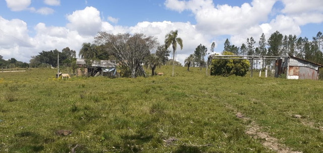Chacara de 2 hectares á 7 km da br 293 - Foto 9