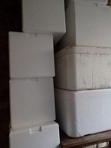 Caixas de isopor Aparti de 15 reais temos de 12 litros 24 litros 50 litros e 100 litros  - Foto 2